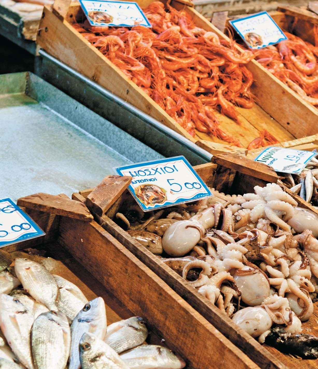 Fish & Seafood: Savoring the Bounty of the Mediterranean Sea